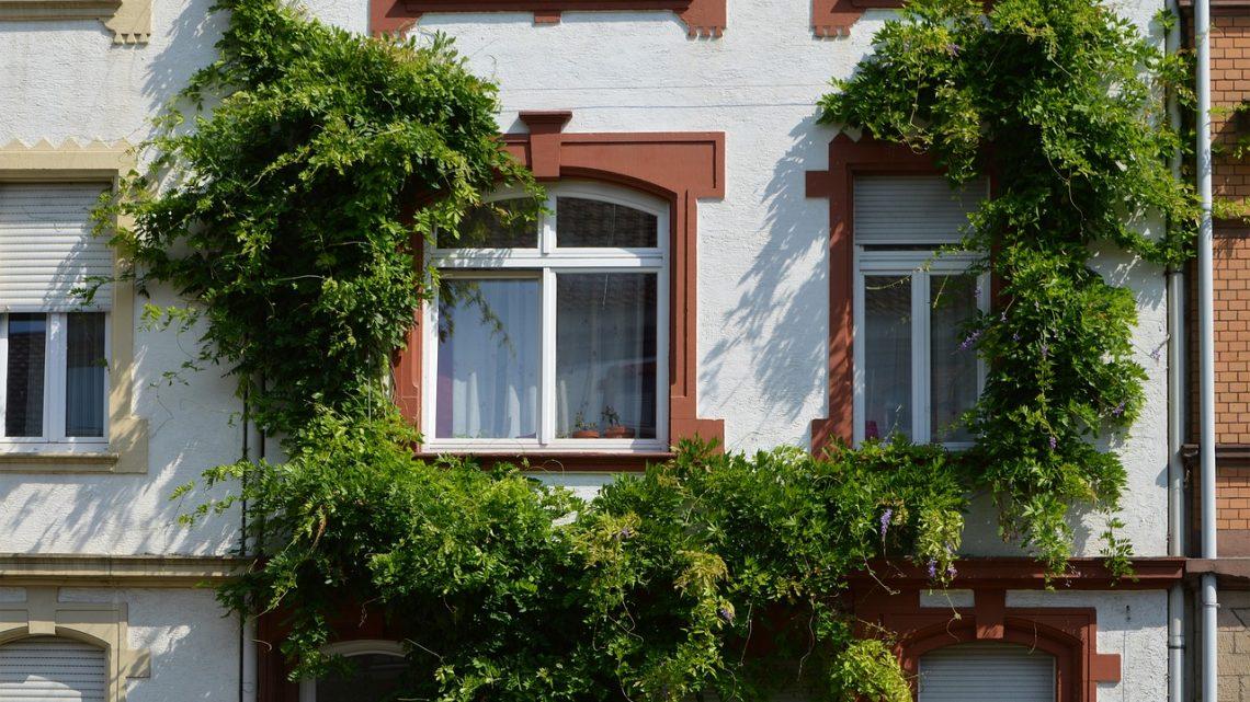 Quel prix pour le remplacement d'une fenêtre ?